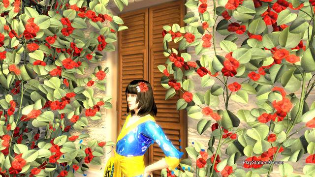 Photo PlayStation(R)Home 2015-02-24 00-10-27.jpg