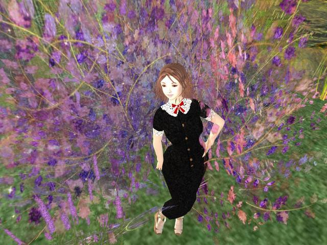 Snapshot2015_09_01_013.jpg